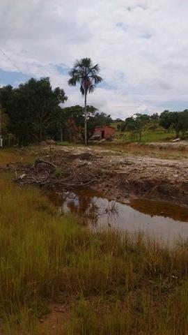 Oportunidades venda de fazenda de 14 alq em Uruaçu GO - Foto 5