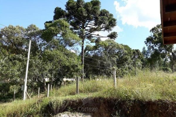 Chácara com 42.350,00m² em Agudos do Sul - Foto 8