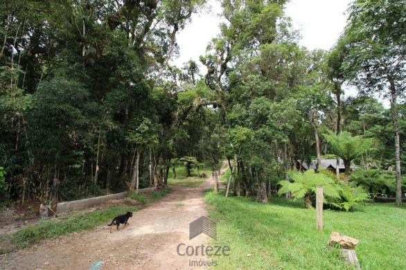 Terreno rural com 4.000 m² no Borda do Campo
