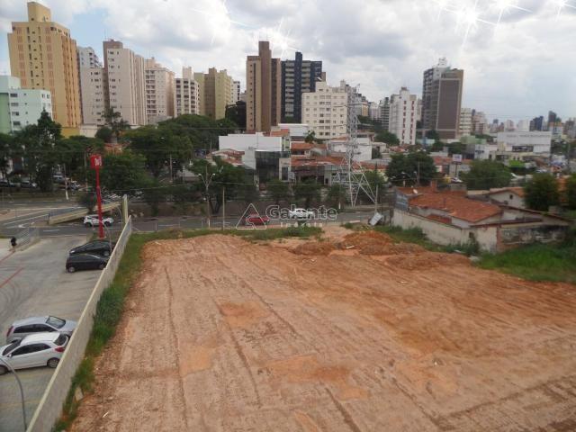 Terreno para alugar com 0 dormitórios em Cambuí, Campinas cod:AR003053 - Foto 6