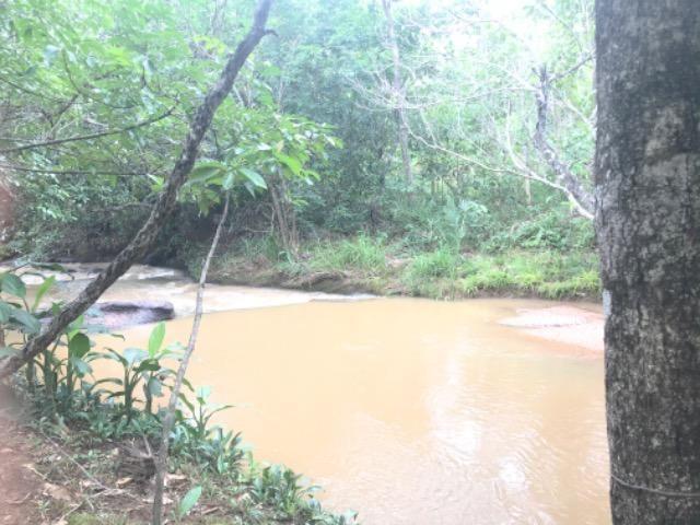 Alugo Chácara em Taquaruçu, Palmas - Tocantins - Foto 12