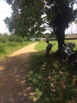 Granja-Chácara-Sítio 1,6 Hectares em Olinda, Aceito Automóvel ou imóvel - Foto 4