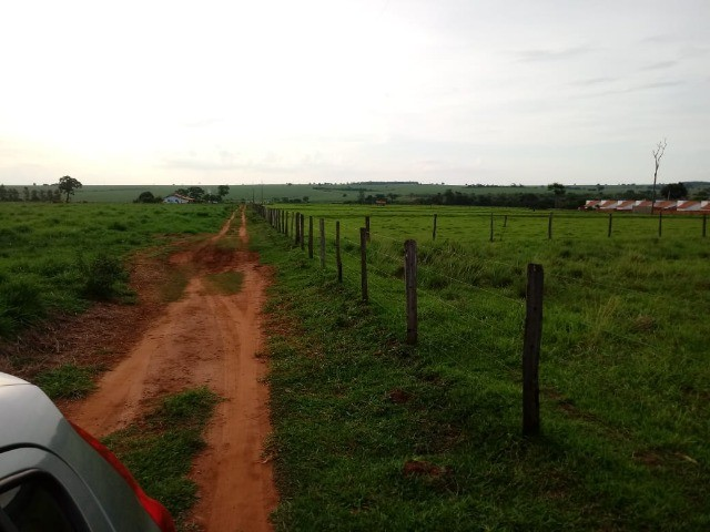Sítio em Sud Mennucci SP 220Mil - Foto 5