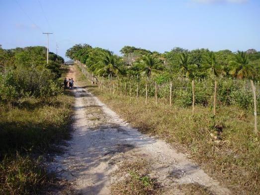 Terrenos em Pium de vários tamanhos e preços - Foto 6