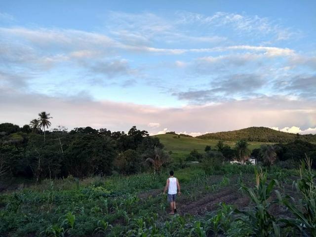 Sitio Próximo à Aracaju - Foto 7