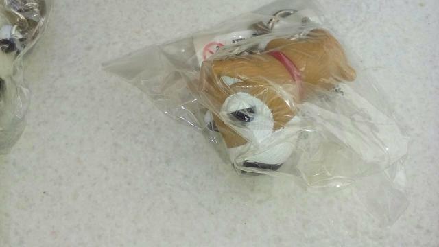 Desapega dogs chips