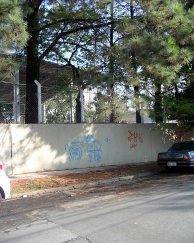 Terreno para alugar com 0 dormitórios em Cambuí, Campinas cod:TE050177 - Foto 4