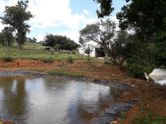 Fazenda à venda ou troca R$ 12 mil o Hectare- Zona Rural - Luziânia/GO - Foto 17