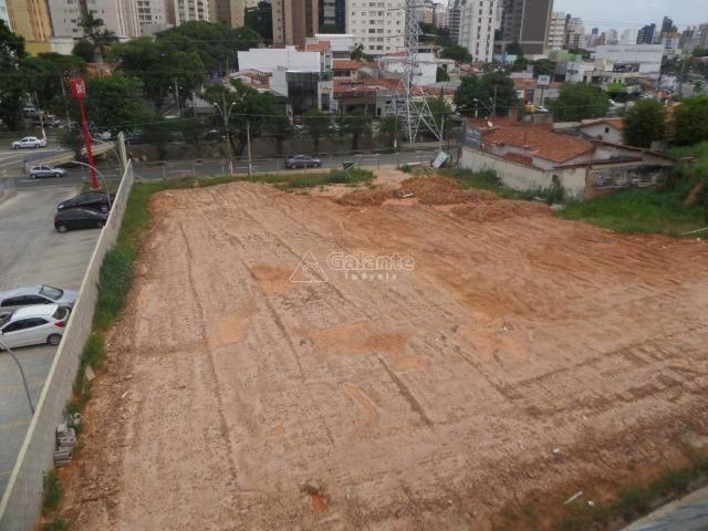 Terreno para alugar com 0 dormitórios em Cambuí, Campinas cod:AR003053 - Foto 4