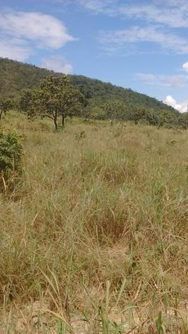 Oportunidades venda de fazenda de 14 alq em Uruaçu GO - Foto 3