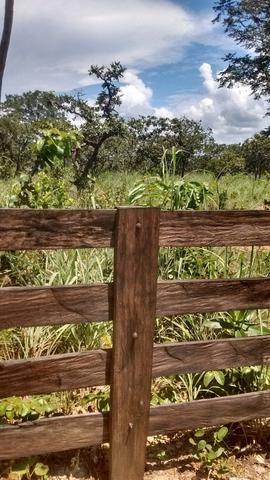 Oportunidades venda de fazenda de 14 alq em Uruaçu GO