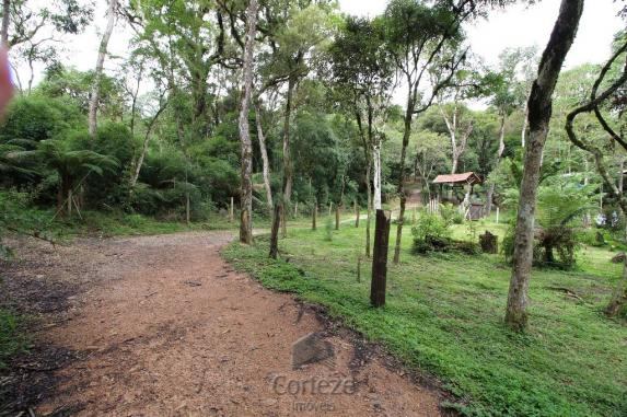Terreno rural com 4.000 m² no Borda do Campo - Foto 7