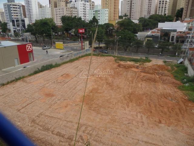 Terreno para alugar com 0 dormitórios em Cambuí, Campinas cod:AR003053 - Foto 5