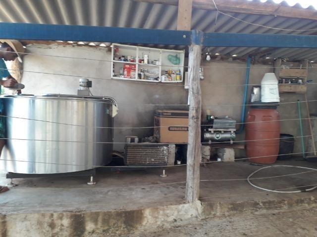 Fazenda à venda ou troca R$ 12 mil o Hectare- Zona Rural - Luziânia/GO - Foto 2