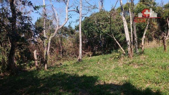 Galpão/depósito/armazém à venda em Sumaré, Caraguatatuba cod:AR0135 - Foto 10