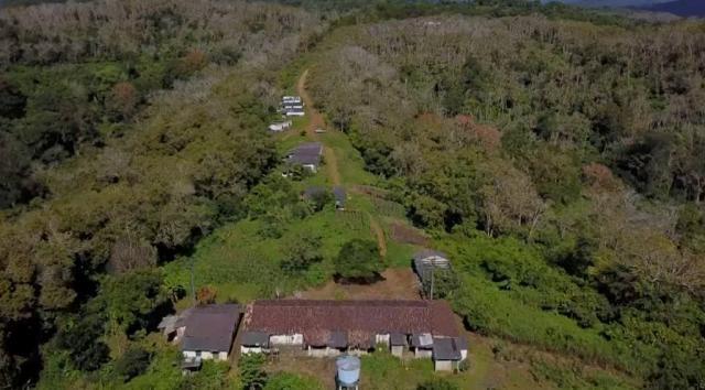Fazenda de Cacau, Látex e Mogno no Brasil - Cidade Ituberá-BA - Foto 12