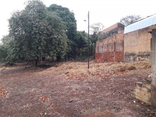 Casas de 1 dormitório(s) no Carmo em Araraquara cod: 10667 - Foto 5