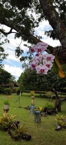 Casa à venda com 5 dormitórios em Aldeia, Camaragibe cod:V749 - Foto 14