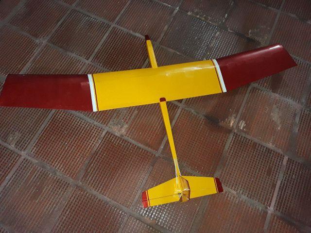 Aeromodelo planador Selig. Flyincircus.