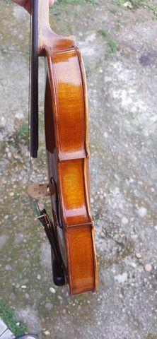 Violino europeu - Foto 5