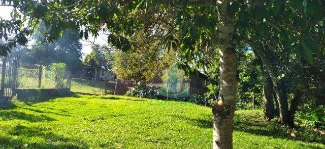 Chácara com 3 dormitórios à venda com 10000 m² por R$ 480.000 no Apepú em São Miguel do Ig - Foto 7