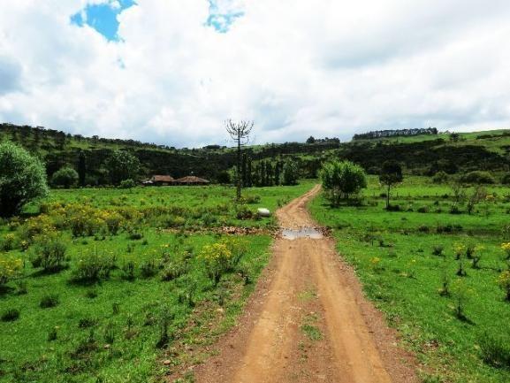 Linda fazenda em Urubici - Foto 6
