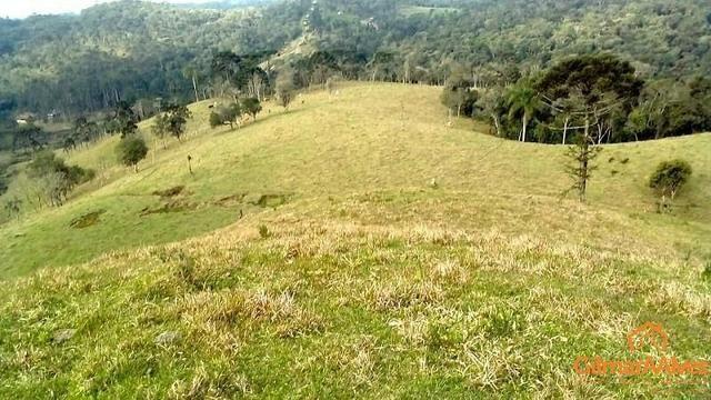 Fazenda para Venda, São Bento do Sul / SC, bairro Sertãozinho - Foto 4
