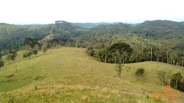 Fazenda para Venda, São Bento do Sul / SC, bairro Sertãozinho - Foto 2