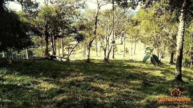 Fazenda para Venda, São Bento do Sul / SC, bairro Sertãozinho - Foto 13