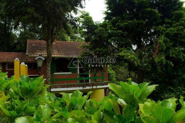 Casa à venda com 5 dormitórios em Centro, Monte verde cod:CA008428 - Foto 7