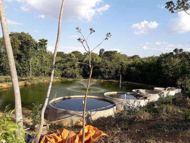 Fazenda à venda ou troca R$ 12 mil o Hectare- Zona Rural - Luziânia/GO - Foto 18