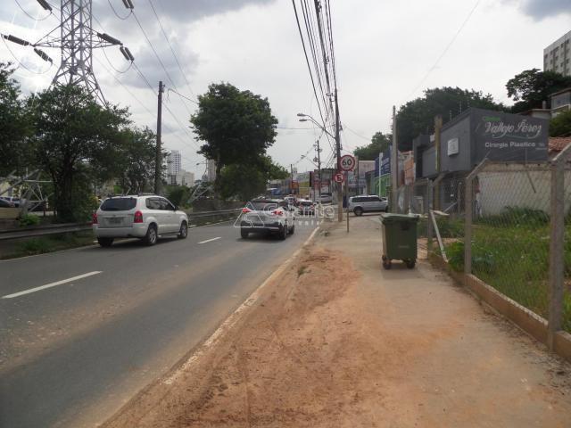 Terreno para alugar com 0 dormitórios em Cambuí, Campinas cod:AR003053 - Foto 3