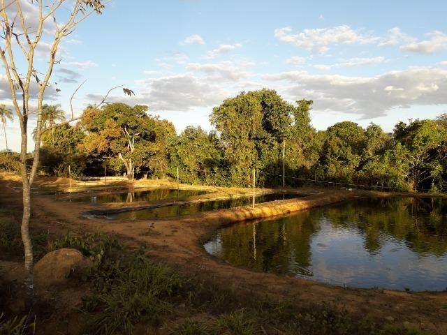 Fazenda à venda ou troca R$ 12 mil o Hectare- Zona Rural - Luziânia/GO - Foto 4