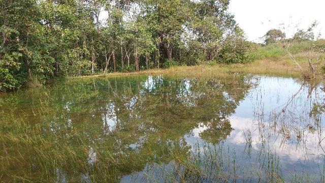 (Fazenda com 297ha em Mato Grosso) no município de Alto Paraguai(MT-409 KM35) - Foto 12