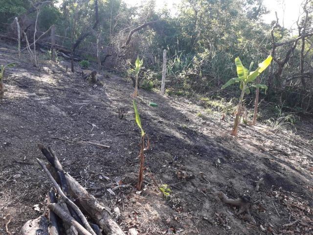 Terreno em Pindobal - Bambuí - Maricá - Foto 8