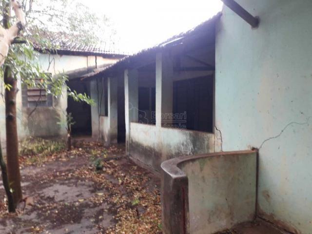 Casas de 1 dormitório(s) no Carmo em Araraquara cod: 10667 - Foto 13