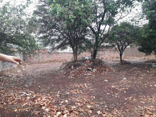 Casas de 1 dormitório(s) no Carmo em Araraquara cod: 10667 - Foto 4