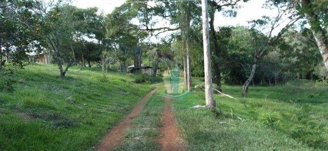 Chácara com 3 dormitórios à venda com 10000 m² por R$ 480.000 no Apepú em São Miguel do Ig - Foto 2