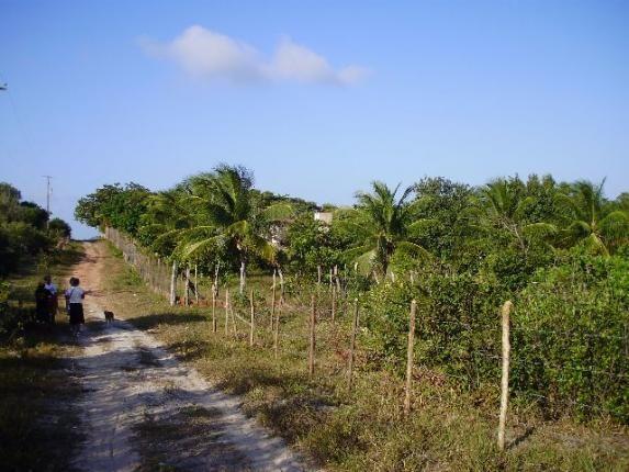 Terrenos em Pium de vários tamanhos e preços - Foto 8