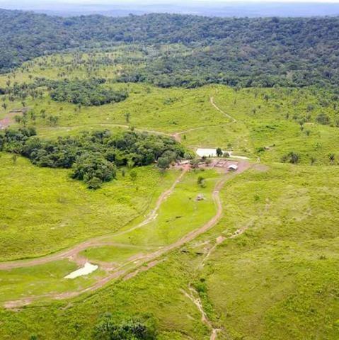 Fazenda medindo 1000 hectares