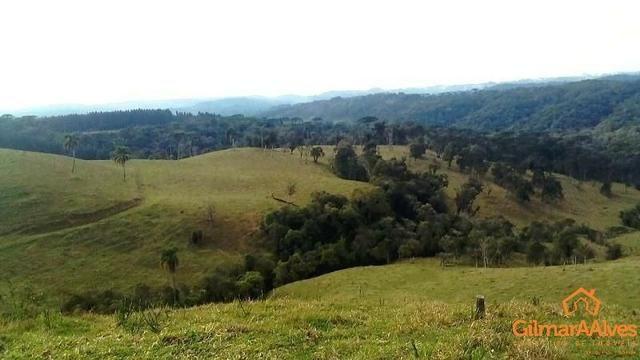 Fazenda para Venda, São Bento do Sul / SC, bairro Sertãozinho - Foto 5