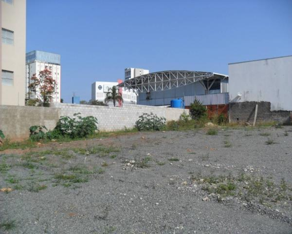 Terreno para alugar com 0 dormitórios em Cambuí, Campinas cod:TE050177 - Foto 8