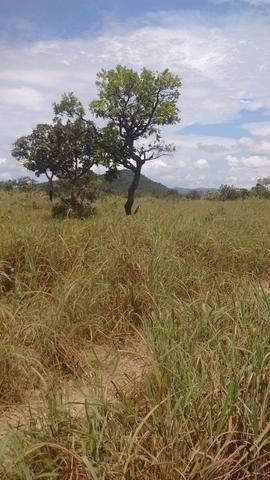 Oportunidades venda de fazenda de 14 alq em Uruaçu GO - Foto 7