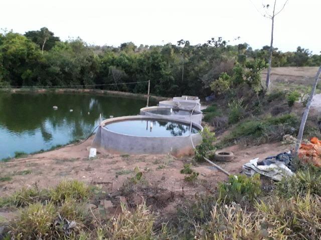 Fazenda à venda ou troca R$ 12 mil o Hectare- Zona Rural - Luziânia/GO