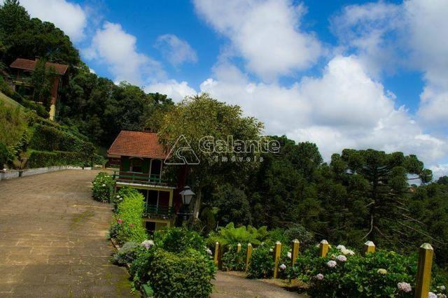 Casa à venda com 5 dormitórios em Centro, Monte verde cod:CA008428 - Foto 13