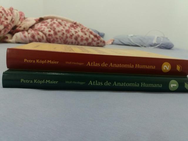8fef0414f Atlas De Anatomia Humana (wolf-heidegger E Petra Kopf-maier ...