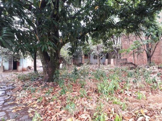 Casas de 1 dormitório(s) no Carmo em Araraquara cod: 10667 - Foto 10