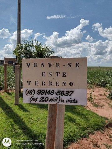 TERRENO P/RANCHO KM11 PEREIRA BARRETO-SP 20.000 A VISTA 25.000 NA TROCA - Foto 6
