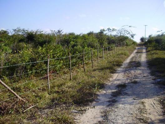 Terrenos em Pium de vários tamanhos e preços - Foto 4