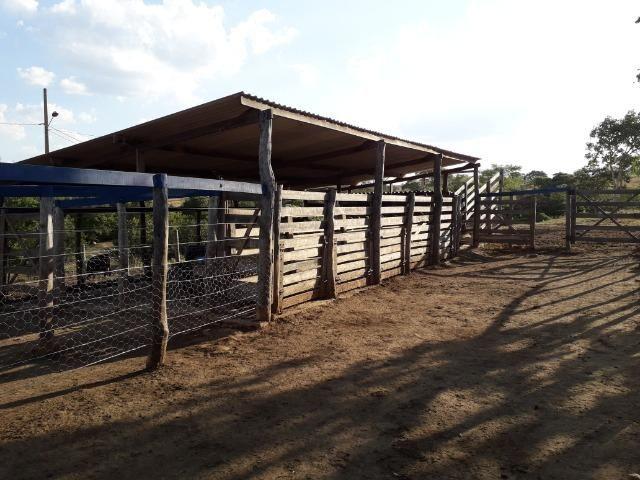Fazenda à venda ou troca R$ 12 mil o Hectare- Zona Rural - Luziânia/GO - Foto 6